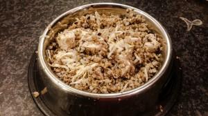 Kuhana hrana za pse je lahko tudi poceni.