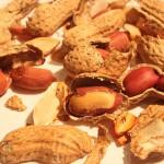 Pasji keksi z arašidovim maslom – noro dobri!