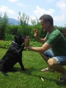 Raw4dogs, surova hrana za pse. Sal in Branko