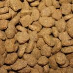 Kdaj je priprava hrane za psa postala znanstvena fantastika?