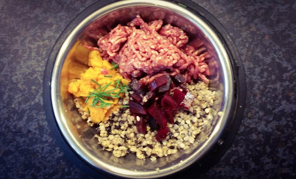 ajdova kaša, rdečapesa in ovje meso za psa