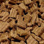 Hladno stiskana hrana za pse: da ali ne?