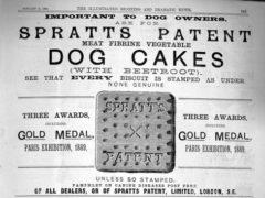 Reklama za Sprattova pasjo hrano, okoli 1910. Vir slike: www.shorpy.com