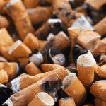 Pasivno kajenje škodi tudi psom!