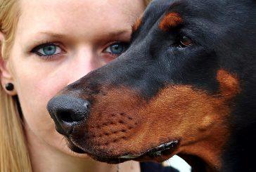 Narava in zdravje – brezplačni posveti z veterinarji