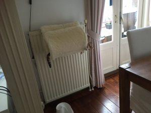 radiatorsko ležišče za mačke