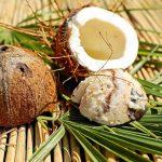 Kokosovo olje za pse: 8 idej za uporabo