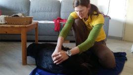 Špela je odlična terapevtka, ki se krasno prilagodi živali, skrbnikom pa vmes poda ogromno nasvetov!