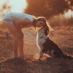 5 stvari, ki se jih lahko naučimo od naših psov