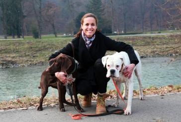 """""""Zavedanje o zdravi pasji prehrani se dviguje, a je še vedno precej nizko"""""""