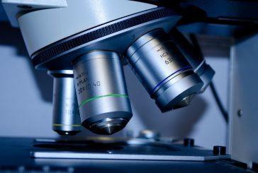 Nizozemska raziskava o zoonozih bakterijah in parazitih v surovem mesu