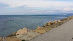 Slovenska obala sprehod s psom
