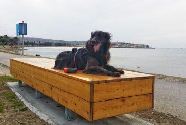 Pešpot Izola – Koper: sprehod s psom