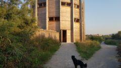 S psom lahko obiščemo Škocjanksi zatok, vendar naj bo obvezno na povodcu!