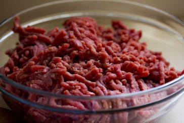 "Odgovorno hranjenja psa s surovim mesom – ""responsible raw"""