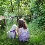 11 preprostih sprememb za bolj zdravo pasje življenje
