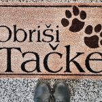 Iskanje najemniškega stanovanja … skupaj s psom!