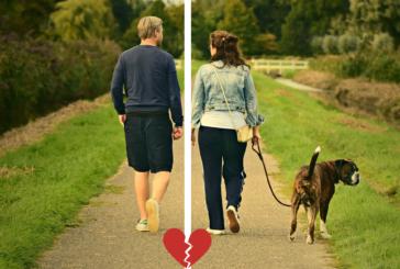 Deljeno skrbništvo za pse: a se hecaš?