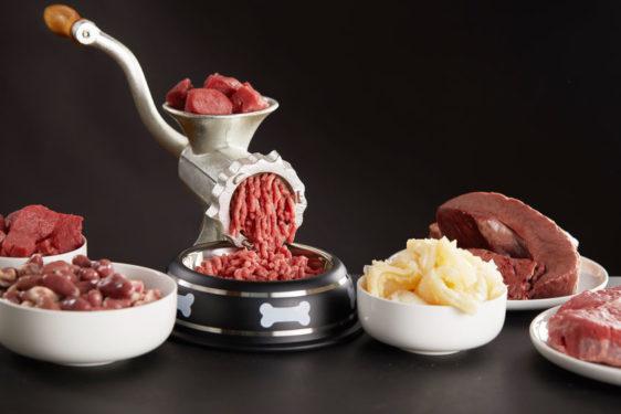 kivo surova hrana za pse plenski model hranjenja psa