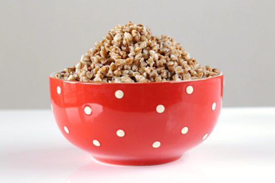 žita v hrani za pse