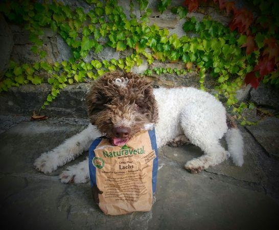 Naturavetal peleti z lososom - hladno stiskana hrana za pse